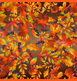 seamless pattern with colorful autumn leaves on vector image vector image