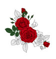 beautiful bouquet with sketches and red roses and vector image