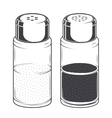 Glass salt and pepper shakers vector image