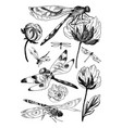 set of floral elements with black and white vector image vector image