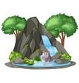 background scene turtle and rhino waterfall vector image vector image