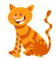 cute cat cartoon animal character vector image vector image