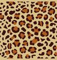 leopard seamless print vector image