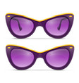 sunglasses for women in plastic frames stock vector image vector image