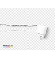tear off paper scroll and rip hole blank concept vector image vector image