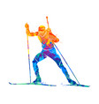 biathlon abstract sport vector image vector image
