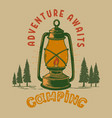 camping adventure awaits vintage design vector image