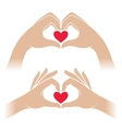 Hands with heart vector image vector image