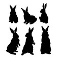 silhouette rabbit vector image vector image