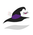 witch hat isolated vector image