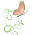 abstract butterfly and flourishes isolated on vector image