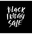 Black Friday Sale Promo Abstract Calligraphic vector image vector image