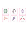 fruits and berries objects icons set isolated on vector image vector image