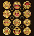 quality golden retro badges collection vector image vector image