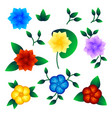 set of exotic flower vector image vector image