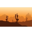 Sunset with Cactus in Desert vector image vector image