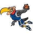 buzzard basketball logo mascot vector image vector image