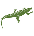 crocodile design vector image vector image