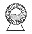 hamster run in wheel sketch engraving vector image
