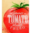 Poster tomato vector image vector image
