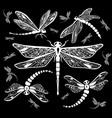 set decorative dragonflies vector image vector image