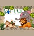 wild animal on stone border vector image