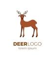 Flat deer logo vector image