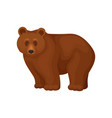 cartoon character of large brown bear standing on vector image vector image