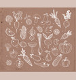 doodle fruits and vegetables on brown parcel paper vector image