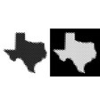 dotted halftone texas map vector image