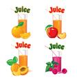 glasses orange apple raspberry apricot vector image vector image