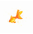 handmade watercolor goldfish vector image