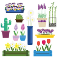 Indoor and Garden Flowers in Pots Set vector image vector image