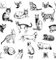 seamless pattern with 16 hand drawn purebred cats vector image vector image