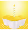 yellow cupcakes vector image vector image