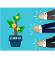 startup tree with coins and starting a business vector image vector image