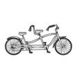 tandem bicycle sketch engraving vector image vector image