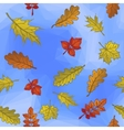 Leaves and Blue Sky vector image