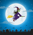 Witch flying on a magic broomstick vector image