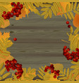 autumn sale sign with autumn leaves on wooden vector image