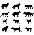 dogs silhouettes collection 2 vector image