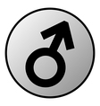 Gender male symbol button vector image vector image