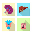 isolated object of body and human sign collection vector image