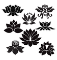 lotus pattern flowers silhouettes vector image vector image