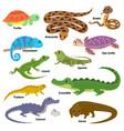 reptile animal reptilian character lizard vector image