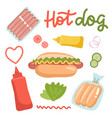 set ingredients for hot dogs isolated on white vector image vector image