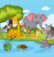 wild animals living next to river vector image vector image