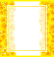 yellow canna lily banner card border vector image