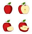 apple whole fruit half slice vector image vector image