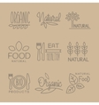 Bio Food Handdrawn Linear Lables Set vector image vector image